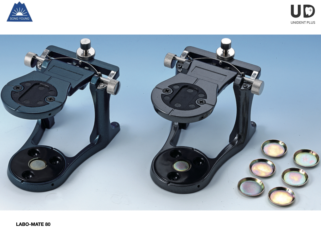 Articulator LABO-MATE 80 SongYoung