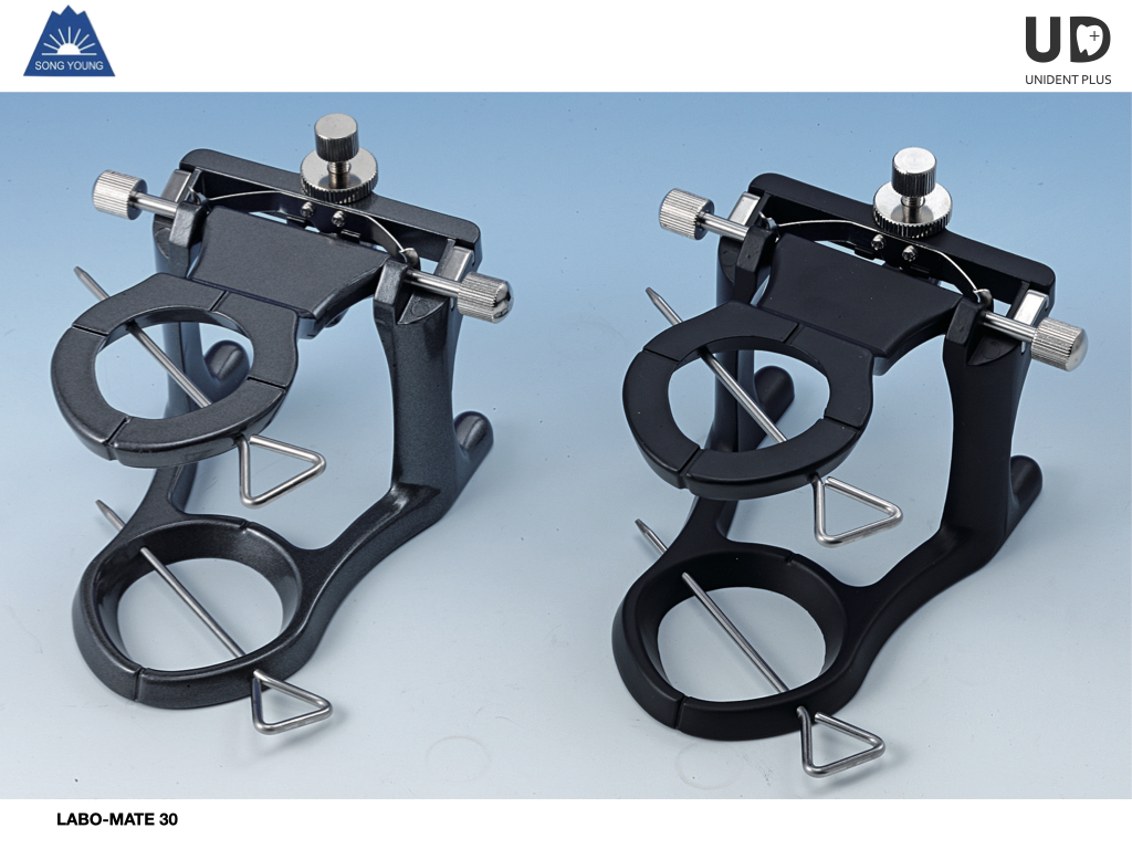 Articulator LABO-MATE 30 SongYoung